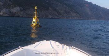 Alugar barcos setubal sesimbra golfinhos seastar03