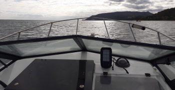 alugar barco setubal sesimbra golfinhos boatkoncept seayou05