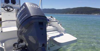 ocean life boatkoncept aluguer barcos 7
