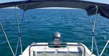 ocean life boatkoncept aluguer barcos 8